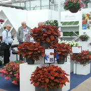 Four Oaks Trade Show 2020 The UK's premier show for